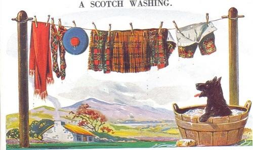 Washing Day, Scottie style.